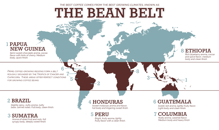 Where Does Our Coffee Come From?