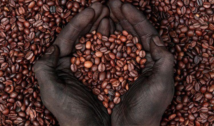 How To Choose Organic Coffee