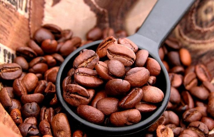 Why Is Organic Coffee Becoming So Popular?
