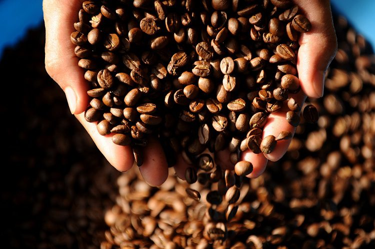 How To Choose High-Quality Coffee Beans
